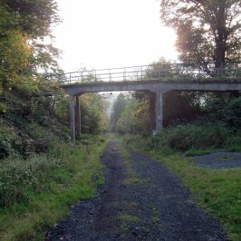 – The super steep abandoned Oder Valley Railway line that once was the longest rack and pinion line in Germany with just the station and a steep gravel path left to bear witness to it (I bet they wished they hadn't closed it in the 50's)